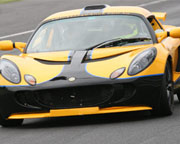 Lotus Exige Race Experience Full Day - Baskerville Raceway, Hobart