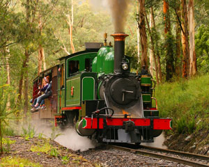 1-Day Puffing Billy & Healesville Sanctuary Tour Including CBD Transfers - Departs Melbourne