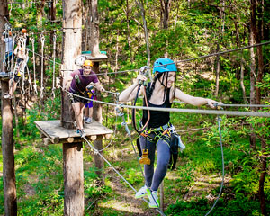 Flying Fox High Ropes Adventure Park - Currumbin, Gold Coast