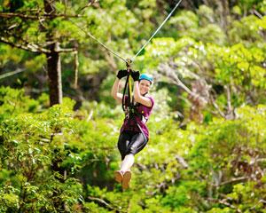 Canyon Flyer Guided Zipline Tour - Tamborine Mountain Gold Coast