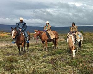Cradle Mountain 4hr Horseback Ride Including Lunch - Speeler Plain Tasmania