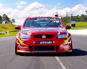 V8 Race Car 8 Lap Drive - Sandown Raceway, Melbourne
