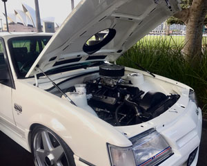 Muscle Cars, Classic Commodore Joy Ride, 3hr - Sydney