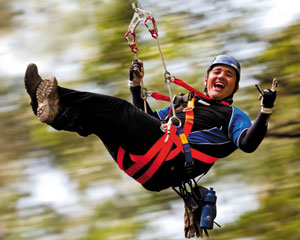Illawarra Fly Treetop Zipline Adventure - ADULTS TRAVEL AT KID'S PRICE