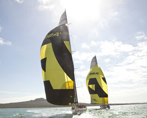 Americas Cup Match Racing, Auckland Harbour