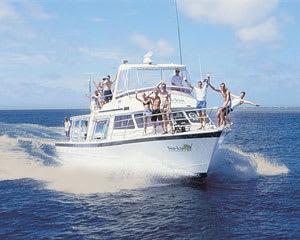 Snorkeling, 1 Day Snorkel Trip - Great Barrier Reef, Cairns