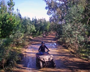 Quad Bike Tour, 2.5 Hours - Gippsland, Melbourne Region