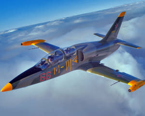 Jet Fighter Flight, L-39 Pilot Mission, 20-minute - Hunter Valley