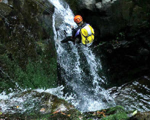 Rainforest Canyoning & Abseiling Adventure, Full Day - Shellharbour