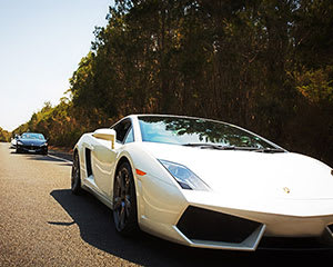 Sydney to South Coast Luxury Supercar Tour (Weekday) INCLUDES PASSENGER