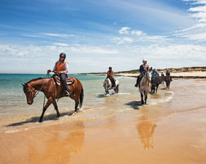 Horse Ride St Andrew's Beach, 2 Hours - Mornington Peninsula, Melbourne