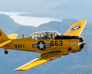 Blue Mountains Adventure Flight in a WW2 Warbird Plane - Sydney