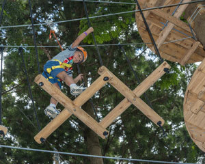 Tree Top Adventure Park For Children 3-9 - Central Coast