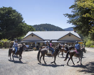 Horse Riding, 1 Day Yarra Valley Pub Ride - Chum Creek, Melbourne