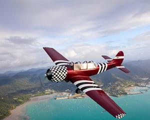 Aerobatic Flight Experience (Gentle 15 Minute Flight) - Airlie Beach, Whitsunday Coast