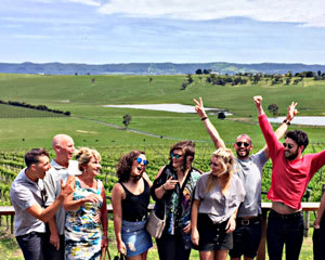 Epic Yarra Valley Wine Tour