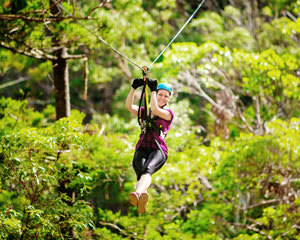 Canyon Flyer Guided Zipline Tour - Tamborine Mountain, Gold Coast
