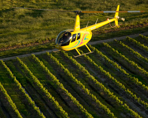 Helicopter Flight, 10-minute Private Tour of the Barossa for up to 3 People - Barossa Valley