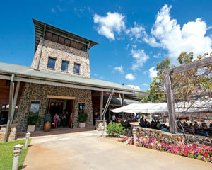Sirromet Winery Tour, The Perfect Winery Package - Brisbane FOR 2