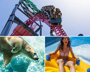 Theme Parks + Attractions - Buy Entry Passes + Tours At Adrenaline