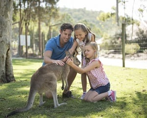 Paradise Country General Admission + BBQ Lunch - Gold Coast