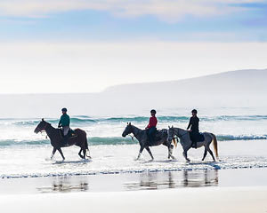 Horse Riding on the Beach, 3 Hours - Bakers Beach, Launceston