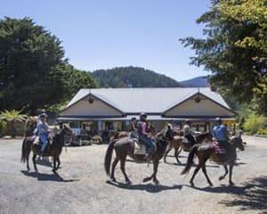 One Day Yarra Valley Wine Tasting Ride - Chum Creek, Yarra Valley Melbourne