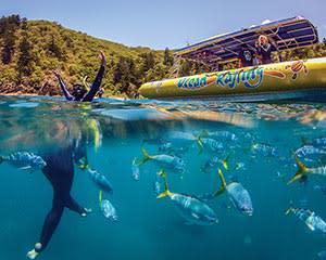 Whitsundays Snorkelling Three-in-One Full Day Experience