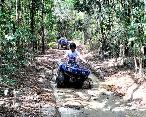 ATV 1.5 Hour Adventure Morning Tour - Cairns