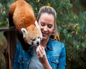 Behind the Scenes at the National Zoo, Weekend - Canberra