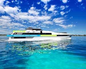 Whale Watching Cruise & Aquarium Entry, Weekdays - Perth