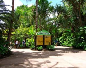 Australia Zoo Day Tour with Animal Shows - Brisbane