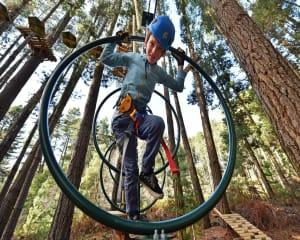 Tree Top Ropes Course, 2 Hours - Launceston, TAS