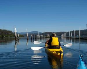 Batemans Harbour Guided Kayak Tour - Batemans Bay
