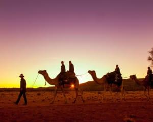 Outback Sunset Camel Ride Tour, Adult - Alice Springs