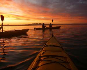 Sunset Guided Coorong Kayaking Tour with Lunch - Goolwa
