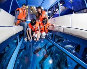 Glass Bottom Boat Tour at The Aquarium of Western Australia