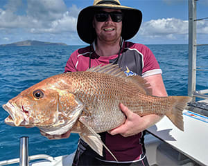 Fishing Charter, Half Day with Transfers - Airlie Beach