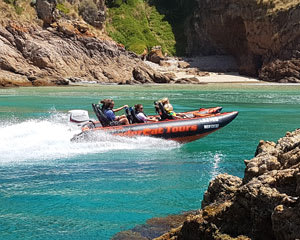 Speedboat Tour Of Phillip Island