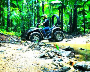 ATV Quad Bike Walks in Cape Tribulation