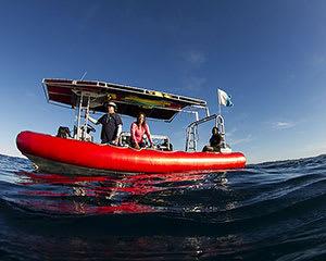 Open Water Dive Course, 3 Days - Julian Rocks, Byron Bay