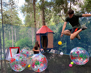 TreeTop NetWorld Admission, 2 Hours - Ourimbah State Forest, Central Coast