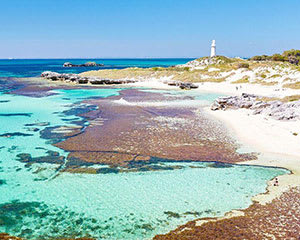 Rottnest Grand Island Package with Ferry, Tour & Light Lunch