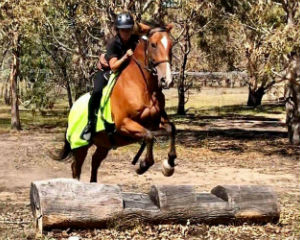 Advanced Horse Riding Tour, 2 Hours - Melbourne