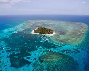 Scenic Flight Over Great Barrier Reef & Port Douglas, 1 Hour - Cairns