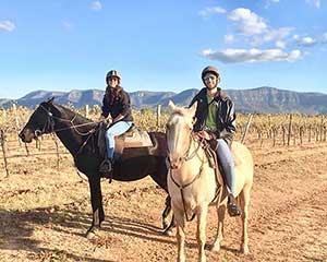 Horse Trail Ride For 2, 1 Hour - Brokenback Range, Hunter Valley