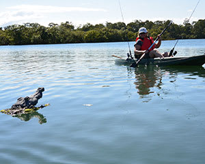 Guided Kayak Fishing Tour – Mooloolaba, Sunshine Coast