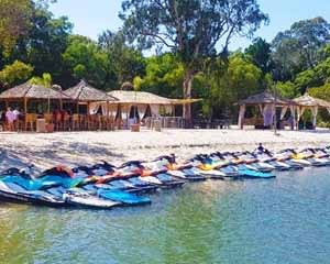 Jet Ski Safari with Island Stop, 90 Minutes - Gold Coast