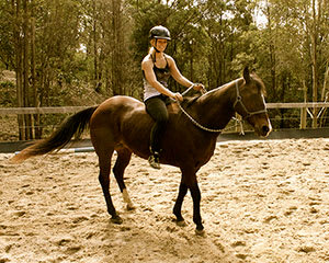 Horse Riding and Half-Day Spa Visit for 2 – Gold Coast Hinterland