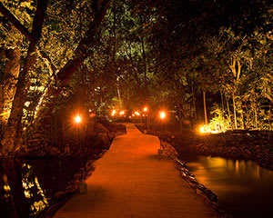 Aboriginal Cultural Rainforest Dining Experience - Departing Cairns